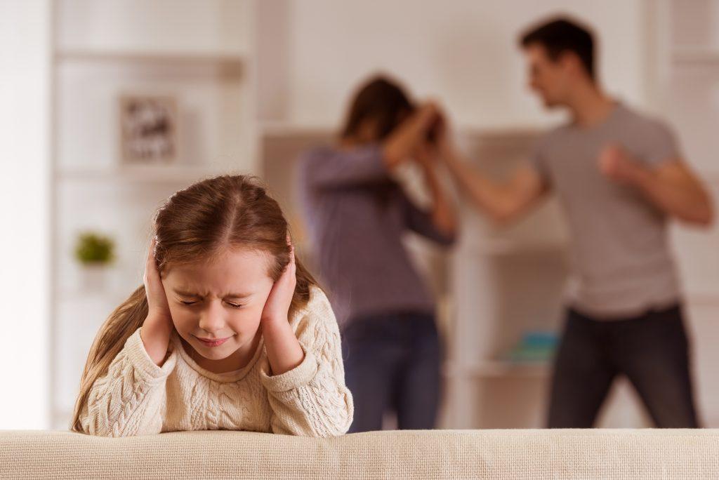 Bruckner Hernandez Legal Solutions LLC Domestic Violence Law