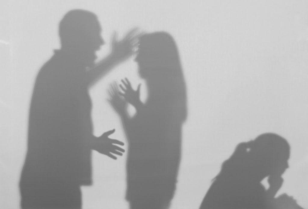 Bruckner Hernandez Legal Solutions LLC Domestic Violence Law Yelling Family